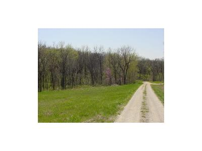 Buchanan County Residential Lots & Land For Sale: 9 Tract Castile Estate Drive