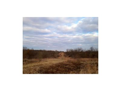 Buchanan County Residential Lots & Land For Sale: Castile Drive