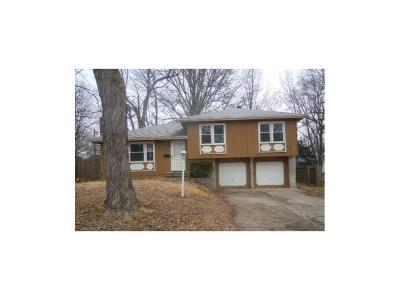 Kansas City Single Family Home For Sale: 8002 E 93rd Terrace
