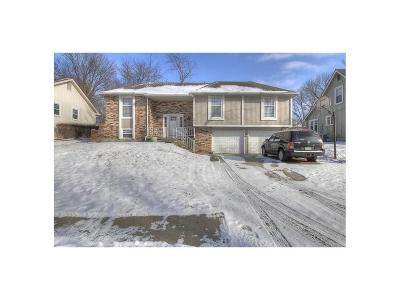 Kansas City Single Family Home For Sale: 7833 N Michigan Avenue