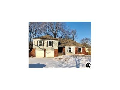 Kansas City Single Family Home For Sale: 9801 Harrison Circle