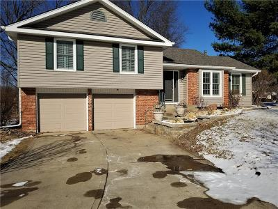 Liberty Single Family Home For Sale: 1700 High Drive