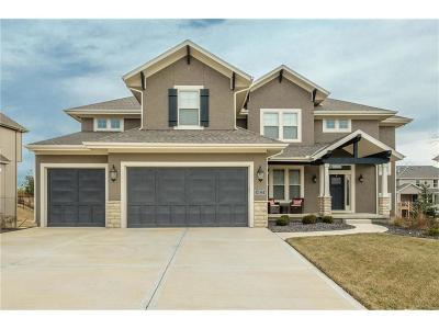 Overland Park Single Family Home For Sale: 16125 Monrovia Street