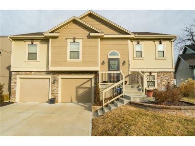 Kansas City Single Family Home For Sale: 12503 Charlotte Street