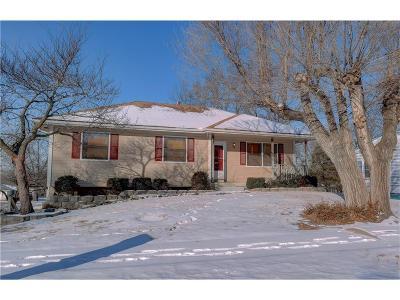 Smithville Single Family Home For Sale: 526 Maple Avenue