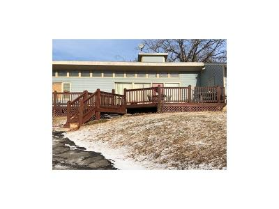 Kansas City Single Family Home For Sale: 8304 Kansas Avenue