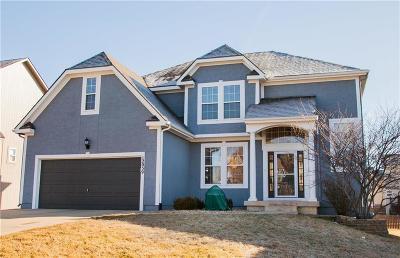 Johnson-KS County Single Family Home Show For Backups: 12039 S Jackson Street