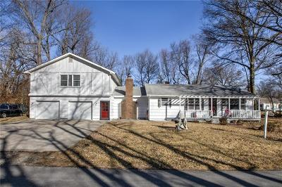 Grain Valley Single Family Home For Sale: 404 NW Yennie Street