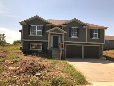 Olathe Single Family Home For Sale: 24969 W 148th Street