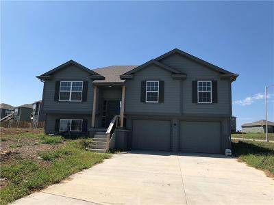 Single Family Home For Sale: 24981 W 148th Street
