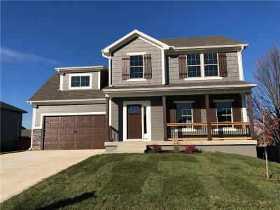 Raymore MO Single Family Home For Sale: $284,100