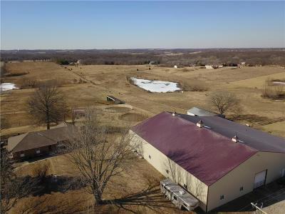 Clinton County Single Family Home For Sale: 7078 SE Perren Road