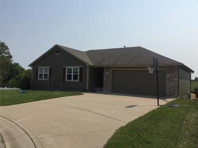 Grain Valley Single Family Home For Sale: 805 NW Poplar Court