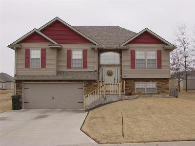 Warrensburg Single Family Home For Sale: 430 Poplar Street
