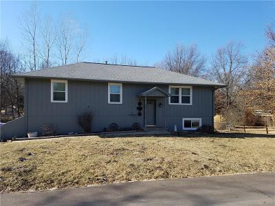 Clinton County Single Family Home For Sale: 616 Valley Street