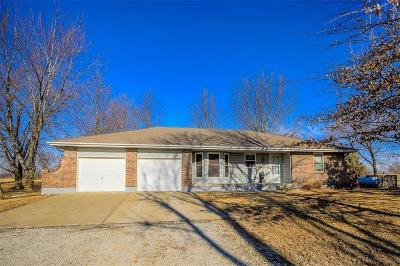 Peculiar MO Single Family Home For Sale: $440,000