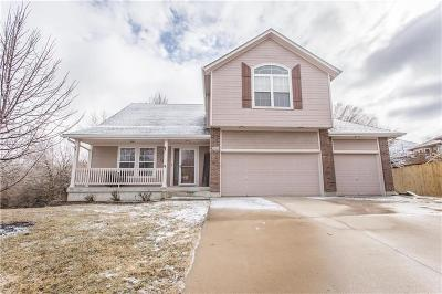 Lee's Summit Single Family Home For Sale: 509 NE Topaz Place