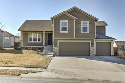 Raymore MO Single Family Home Show For Backups: $287,500