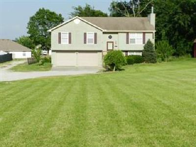 Grain Valley Single Family Home For Sale: 307 S Minter Road