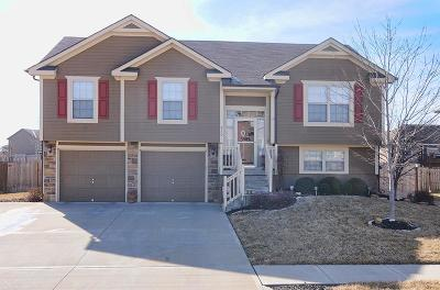 Grain Valley Single Family Home Show For Backups: 610 NW Green Drive