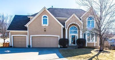 Lee's Summit Single Family Home For Sale: 409 NE Sapphire Lane
