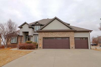 Kansas City Single Family Home For Sale: 10114 NE 100th Street