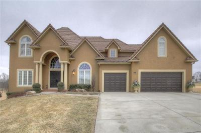 Kansas City Single Family Home For Sale: 10001 N Revere Court