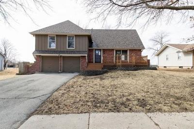 Olathe Single Family Home Auction: 1111 S Avalon Lane