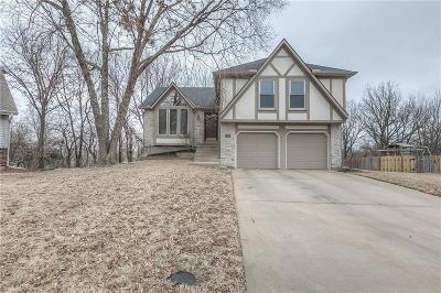 Shawnee Single Family Home For Sale: 6359 Hilltop Street