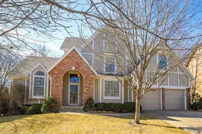 Johnson-KS County Single Family Home For Sale: 9135 W 131st Place
