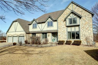 Single Family Home For Sale: 4817 S Tierney Drive