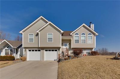 Liberty Single Family Home For Sale: 1166 Cardinal Drive