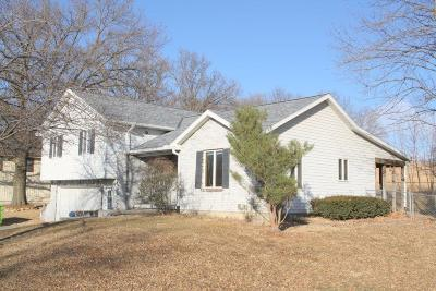 Smithville Single Family Home For Sale: 411 169 Highway
