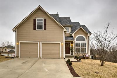 Excelsior Springs Single Family Home For Sale: 2033 West Springs Way
