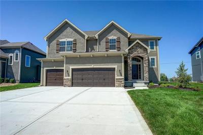 Olathe Single Family Home For Sale: 12234 S Pine Street