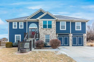 Kansas City MO Single Family Home For Sale: $254,500