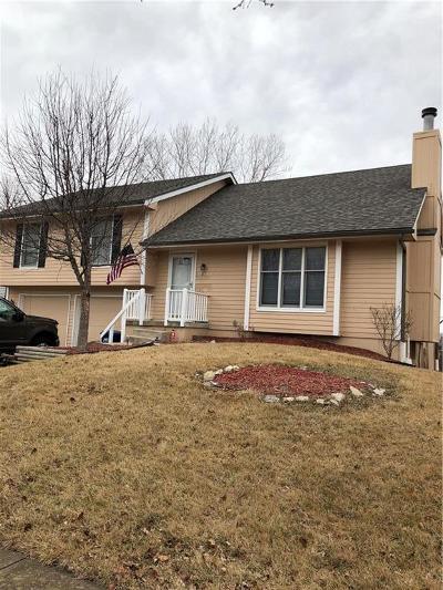 Smithville Single Family Home For Sale: 121 S Prairie Rose