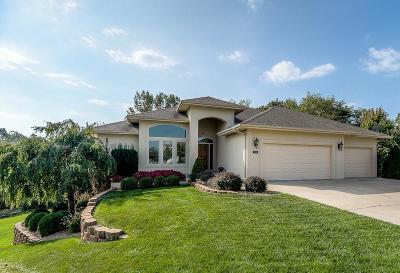 Blue Springs Single Family Home For Sale: 914 SE Cedrus Lane