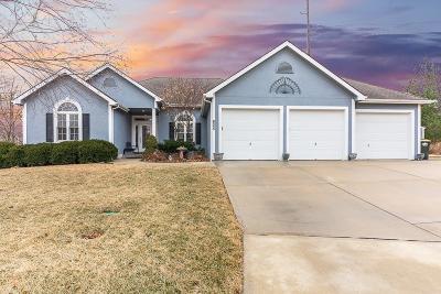 Lansing Single Family Home For Sale: 805 Merion Street