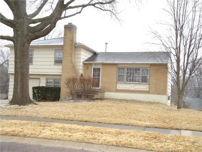 Overland Park Single Family Home For Sale: 9717 Eby Street