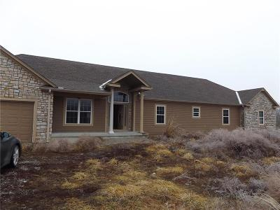Single Family Home For Sale: 37649 Mo 210 Highway