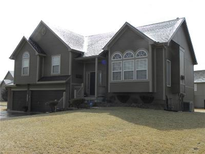 Lee's Summit Single Family Home For Sale: 2516 SW Valley Ridge Lane