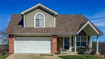 Blue Springs Single Family Home For Sale: 1484 NW Yankee Drive