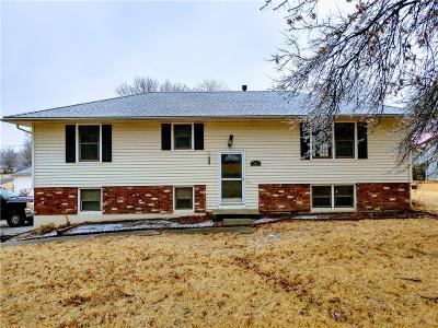 Single Family Home For Sale: 903 Garner Street