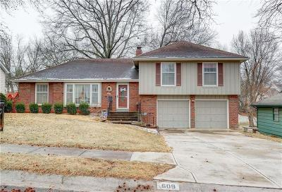 Kansas City Single Family Home For Sale: 609 W 109 Terrace