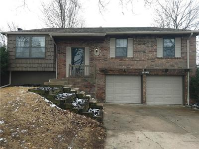 Blue Springs Single Family Home For Sale: 2504 NW Oxford Drive