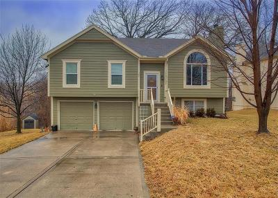 Clay County Single Family Home For Sale: 7132 N Hickory Street