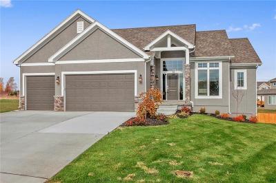 Lenexa Single Family Home For Sale: 8836 Houston Street