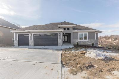 Parkville Single Family Home For Sale: 9831 Promenade Drive