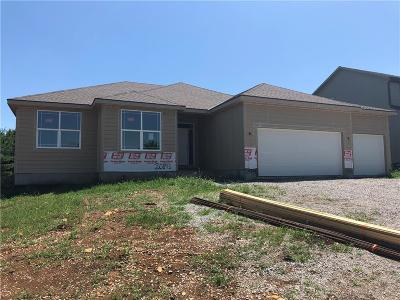 Spring Hill Single Family Home For Sale: 20895 W 225 Terrace